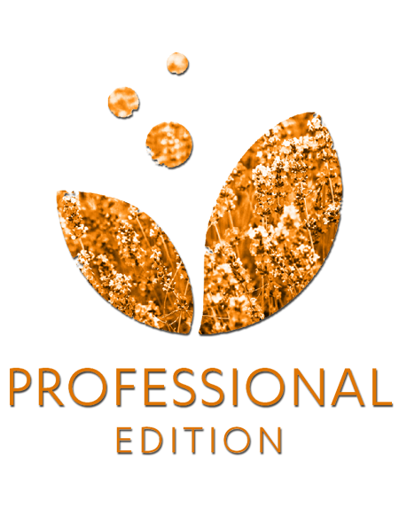 Professional Edition